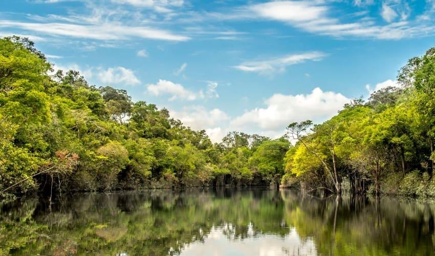 амазонская низменность, самая большая равнина на земле