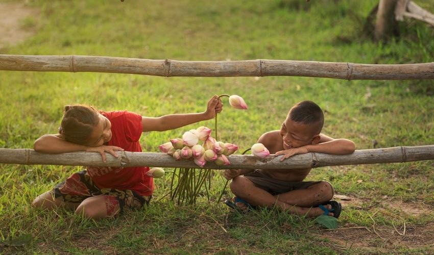 что такое дружба, дружба, дружба это, дружбой называют