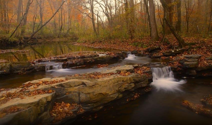 экологические системы водоемов, системы водоемов, водоемы, защита водоемов, уничтожение водоемов, осушение водоемов