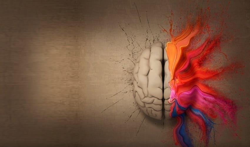 элементы психики, основные элементы психики