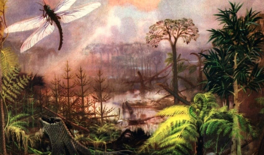 каменноугольный период палеозойской эры карбон, каменноугольный период палеозойской эры, каменноугольный период, карбон