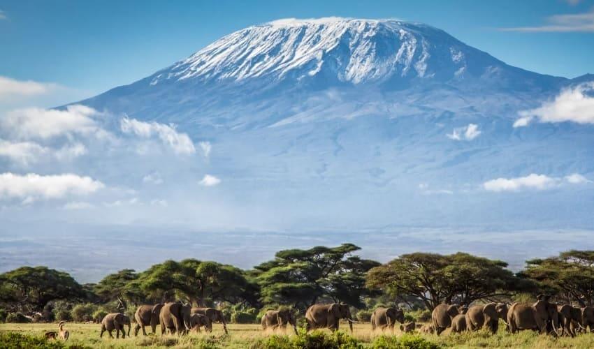 килиманджаро высочайшая вершина африки, килиманджаро, высочайшая вершина африки