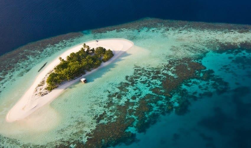 коралловые рифы, рифы, коралловые рифы представляют собой, коралловый риф