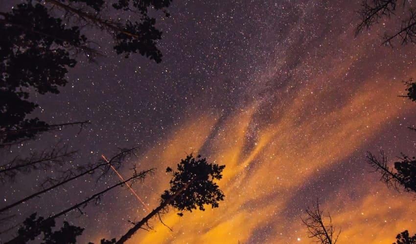 местное межзвездное облако, что такое местное межзвездное облако, межзвездное облако, местное межзвездное облако это