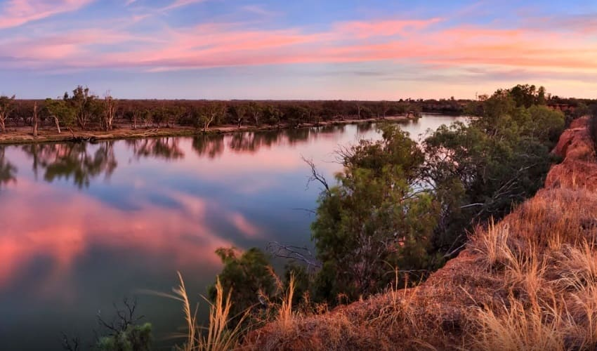 австралийский муррей, река муррей, муррей