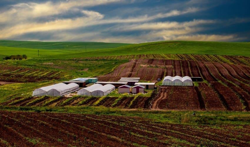 что такое почва, почва, образование почвы, как образуется почва