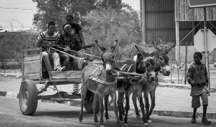 африканский пояс бедности, пояс бедности