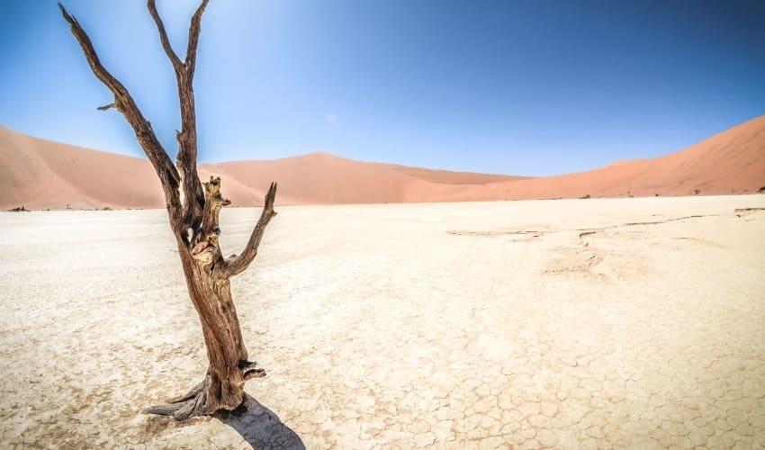 какой материк самый жаркий, самый жаркий материк, африка самый жаркий материк