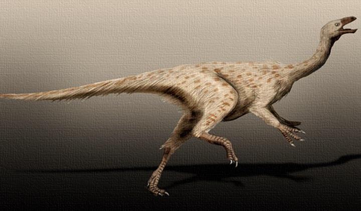 какой динозавр был самым быстрым, самый быстрый динозавр, орнитомимозавр