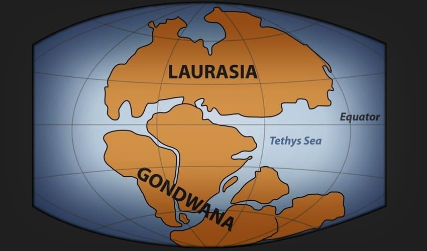 древние континенты, пангея, гондвана, лавразия