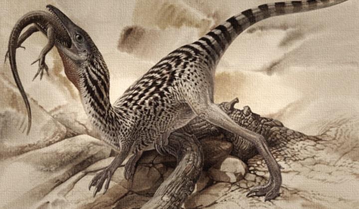 какой динозавр был самым маленьким, компсогнат, самый маленький динозавр
