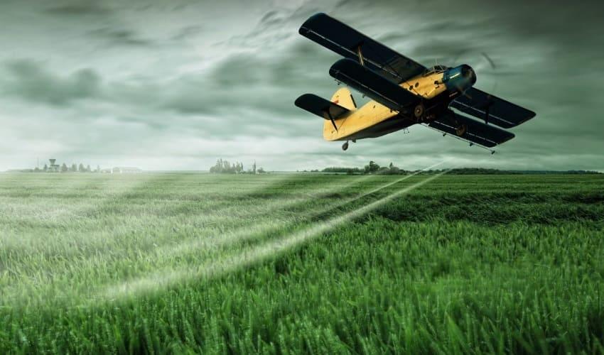 Зачем посевы обрабатывают пестицидами?