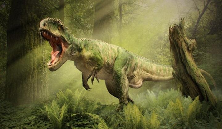 чем питались динозавры, питание динозавров, что ели динозавры