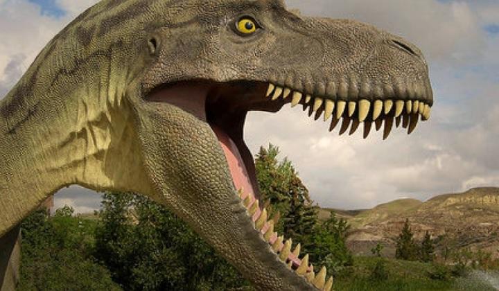для чего динозаврам зубы, зубы динозавра, какие зубы у динозавра
