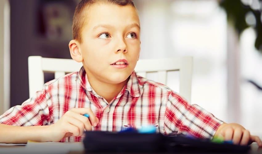 что такое домашнее обучение, домашнее обучение, домашнее обучение это, домашнее образование