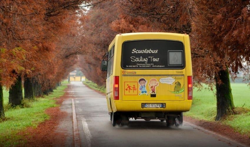 почему в школьных автобусах нет ремней безопасности, ремни безопасности в школьных автобусах, ремни безопасности