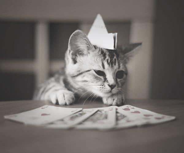 Рулетка казино песня