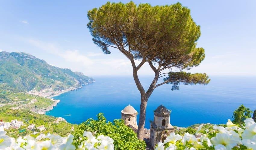 вечнозеленое средиземноморье, средиземноморье