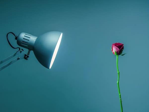 Классический светильник, обеспечивающий узконаправленное освещение объектов