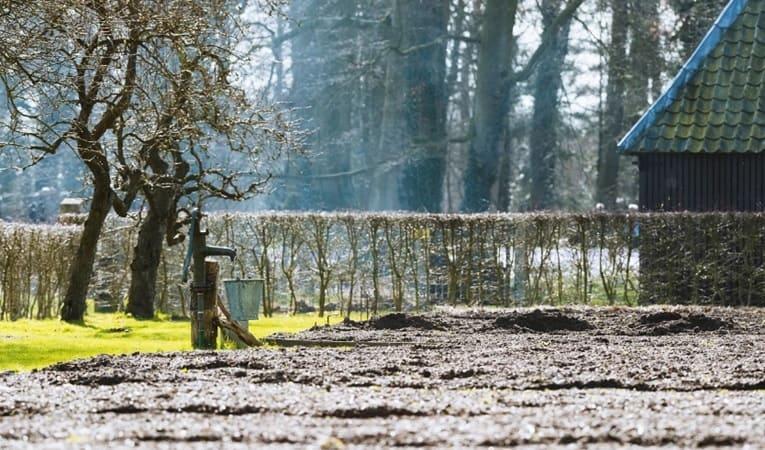 Зачем нужны садовые насосы?