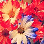 Как «не облажаться» при выборе букета цветов для девушки? 7 простых правил…